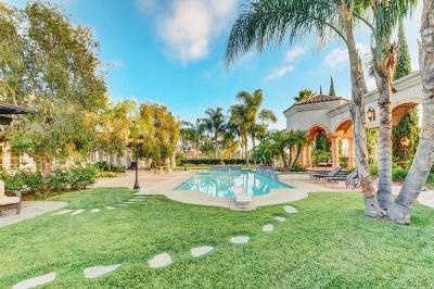 Rancho Santa Fe Single Family Home Sold: Rancho Santa Fe Farms Rd