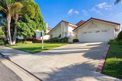 Single Family Home For Sale: 1115 Cerro Largo Drive