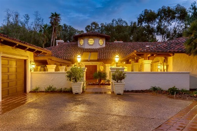 Rancho Santa Fe Single Family Home For Sale: 16745 Avenida Arroyo Pasajero