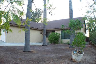 Oceanside Single Family Home For Sale: 4978 Gabrielieno Avenue