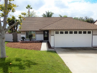 Vista Single Family Home For Sale: 308 Dorsey Way