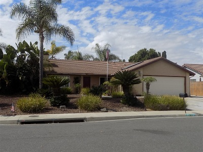 Oceanside Single Family Home For Sale: 1397 Broken Hitch Road
