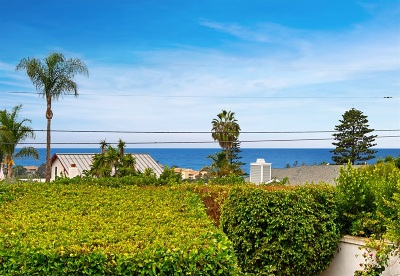 Solana Beach Single Family Home For Sale: 343 Via De Vista