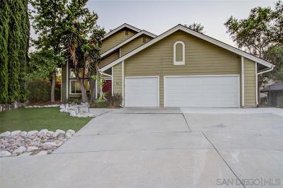 Oceanside Single Family Home For Sale: 876 Oro Grande St