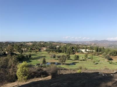 Escondido Residential Lots & Land For Sale: 3919 Tierra Vista Pl