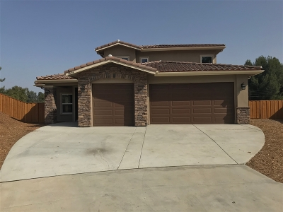 el cajon Single Family Home For Sale: 1824 El Jardin Ct