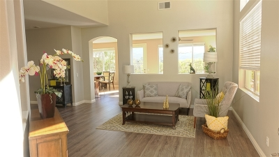 Carlsbad Single Family Home For Sale: 6882 Via Borregos