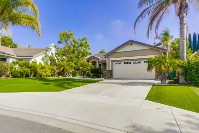 Oceanside Single Family Home For Sale: 868 Panella Ct