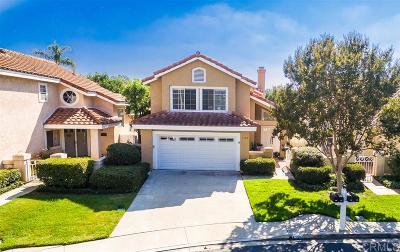 Vista Single Family Home For Sale: 1120 Brioso Ct