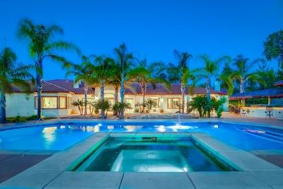 Murrieta, Temecula Single Family Home For Sale: 43681 Piasano Pl