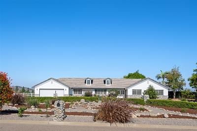 Fallbrook Single Family Home For Sale: 360 Futurity Lane