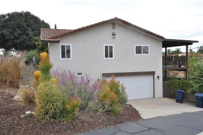 Escondido Single Family Home For Sale: 252 Vista Grande Glen