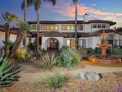 Encinitas Single Family Home For Sale: 3317 Fortuna Ranch Rd