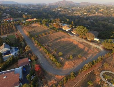 Fallbrook Residential Lots & Land For Sale: 2255 Corner Creek Ln
