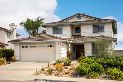 Encinitas Single Family Home For Sale: 1173 Calle Christopher