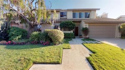 Rancho Santa Fe Single Family Home For Sale: 3829 Avenida Feliz