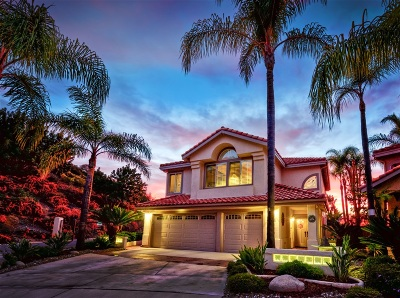 San Diego Single Family Home For Sale: 9304 Hito