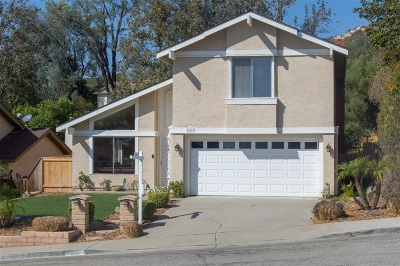Escondido Single Family Home For Sale: 622 Woodside Place
