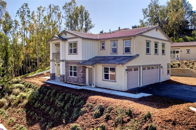 Carlsbad Single Family Home For Sale: 3115 Afton Way