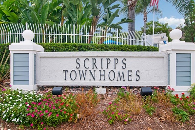Townhouse For Sale: 9990 Scripps Vista Way #85