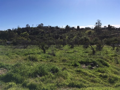 Fallbrook Residential Lots & Land For Sale: Riverview Dr@mr Ranch 70-Parcel 2 #70-Parce