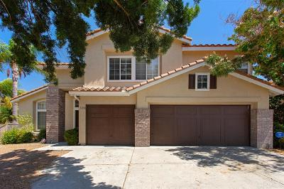 Oceanside Single Family Home For Sale: 1238 Sunglow Dr