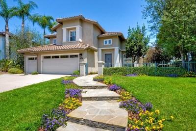 Carlsbad Single Family Home For Sale: 7318 Golden Star Ln