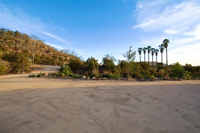 Escondido Single Family Home For Sale: Rincon Ave Lot 187-351-04
