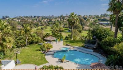 Oceanside Single Family Home For Sale: 2397 Carriage Cir