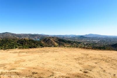 Escondido CA Single Family Home For Sale: $725,000