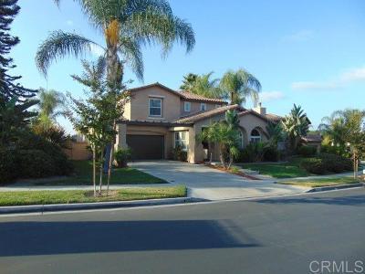 Chula Vista Single Family Home For Sale: 1228 Bolinas Bay Court