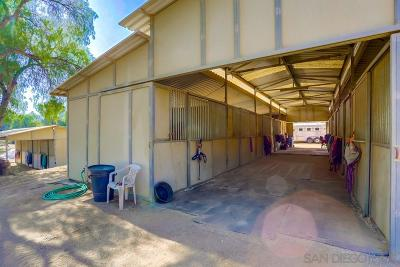 Riverside County, San Diego County Single Family Home For Sale: 18402 Dos Picos Park Rd