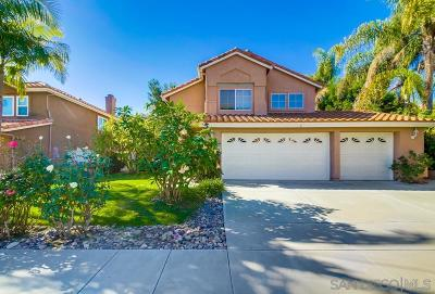Oceanside Single Family Home For Sale: 1195 Masterpiece Dr