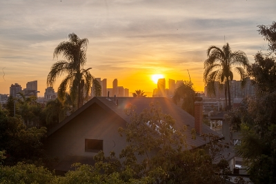 San Diego Attached For Sale: 1220 23rd St #4