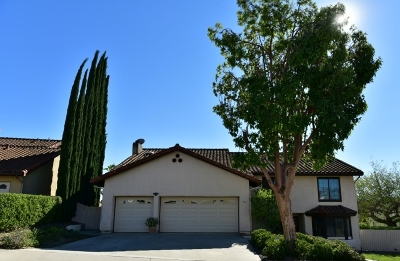 Escondido Single Family Home For Sale: 731 Inspiration Ln