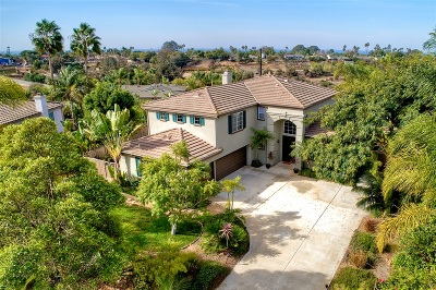 Encinitas Single Family Home For Sale: 1419 Arbor Ct