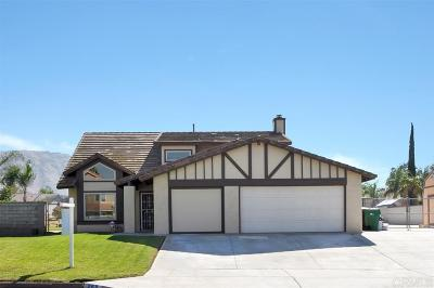 Riverside County Single Family Home For Sale: 268 Owetzal Lane