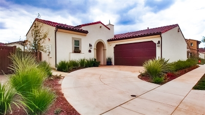San Diego Single Family Home For Sale: 7965 Lusardi Creek Ln