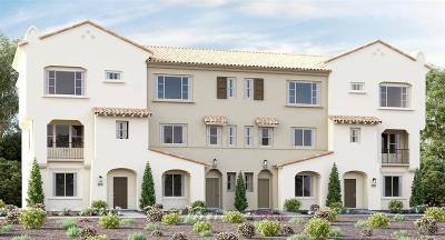 Vista Attached For Sale: 1579 Castillo Way #15