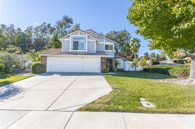 Riverside County Single Family Home For Sale: 41305 Promenade Chardonnay Hls