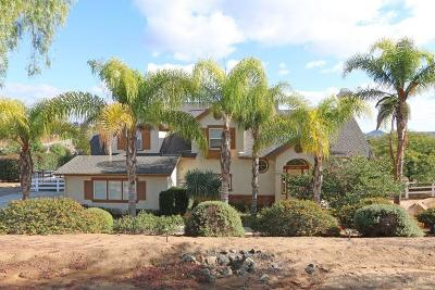 Valley Center Single Family Home For Sale: 30369 Palomar Vista Drive