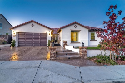 Vista Single Family Home For Sale: 446 Adobe Estates Drive