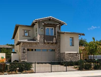 Carlsbad Single Family Home For Sale: 3062 Villeta Avenue #Lot 16