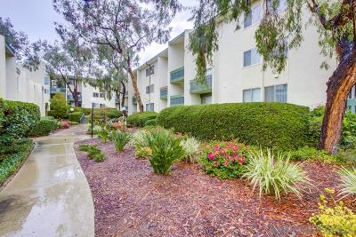 Attached For Sale: 4064 Huerfano Ave #259
