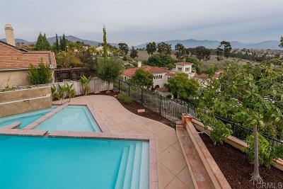 Single Family Home For Sale: 1124 Joshua Creek Place