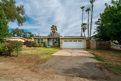 Escondido Single Family Home For Sale: 1738 S Maple St