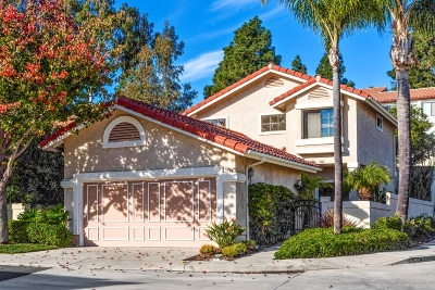Single Family Home For Sale: 3984 Caminito Silvela