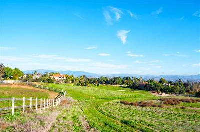 Fallbrook Residential Lots & Land For Sale: Lake Ridge Road #27