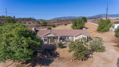 Valley Center Single Family Home For Sale: 30778 Star Haven Dr