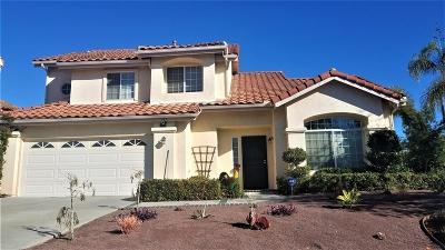 Oceanside Single Family Home For Sale: 463 Via Cruz
